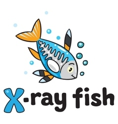 X-ray fish for abc alphabet x vector