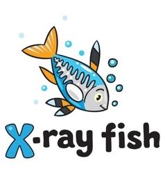 X-ray fish for ABC Alphabet X vector image