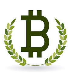 Bitcoin design vector image