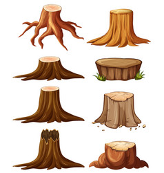 Different types of stumps vector