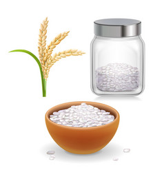 Rice ear bowl jar with rice grain vector