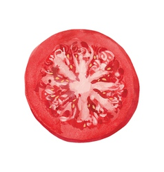 Slice of tomato vector