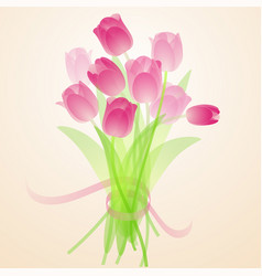 spring fresh bouquet of tulips vector image vector image