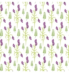Wild flower purple plant spring field seamless vector