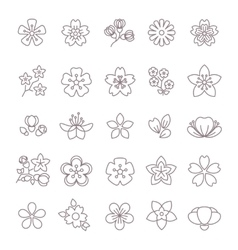 Spring flower thin line icons set vector