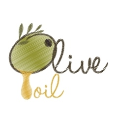 drawing lettering olive oil design vector image vector image