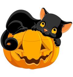 Halloween kitten vector