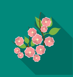 sakura flowers icon in flat style isolated on vector image vector image
