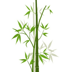Bamboo sticks vector image vector image