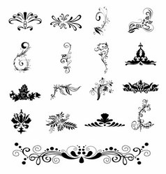 Silhouette elegant ornament floral design vector