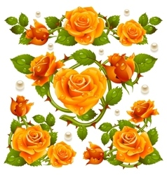 Yellow rose design elements vector