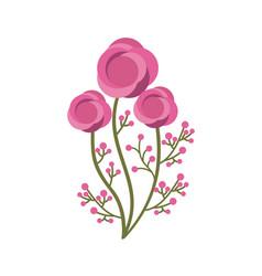 Beautiful flowers design vector