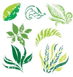 plant design elemets vector image vector image