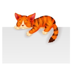 Cute cat cartoon sleeping vector image vector image