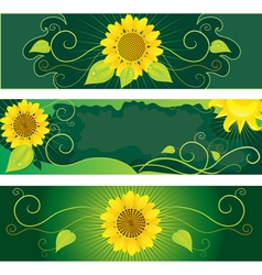 set of backgrounds with sunflowers vector image vector image