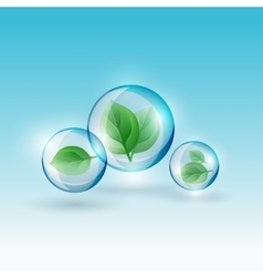 Bubble with green leaves vector image