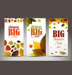 fresh natural fall vertical banners with leafs vector image