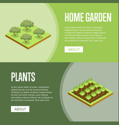 home garden and decorative plants posters vector image vector image