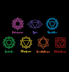 set of beautiful indian ornamental chakras vector image