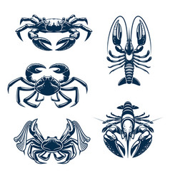 Seafood icon set with crab and lobster vector