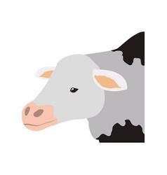 Cow farm animal vector