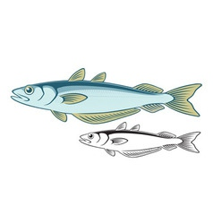 blue whiting vector image