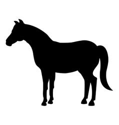 horse animal farm icon vector image vector image