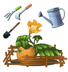 Tools for the cultivation of horticultural crops vector