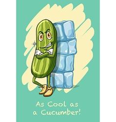 Idiom as cool as cucumber vector