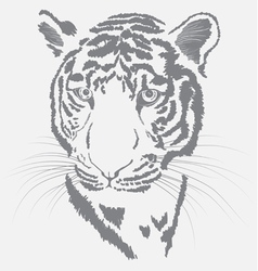 Tigers face vector