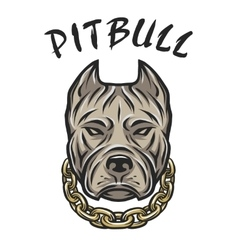 The head of a pit bull with a chain vector