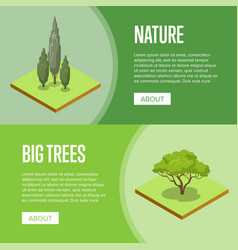 big trees and decorative plants posters vector image vector image