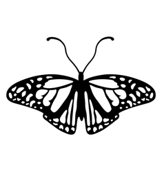 Black and white butterfly logo vector image