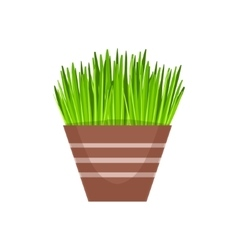 Home grass vegetation in the flowerpot flower vector