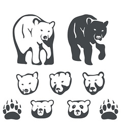 Set of bears for emblems and labels vector