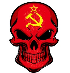 Uni Soviet flag painted on skull vector image vector image