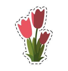 Cartoon women day tulip bunch flower vector
