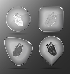 Heart Glass buttons vector image vector image