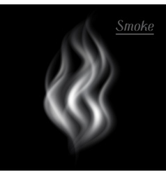 Realistic of smoke on black vector image