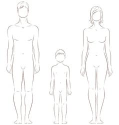Human figure vector image