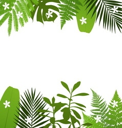 Tropical leaves background with vector