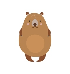 Cartoon bear haracter vector image