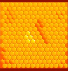 Honey cells vector