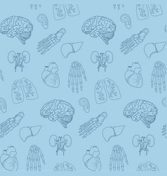 Human parts and organs pattern vector