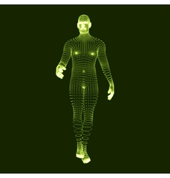 Man stands on his feet 3d human body model vector