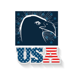 Usa eagle design vector