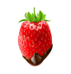 Strawberry with leaves in chocolate dipping white vector