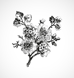 Hand-drawn twig with flowers vintage isolated vector image