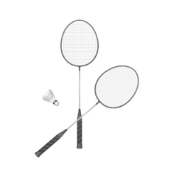 Badminton Rackets with Shuttlecock vector image