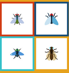Flat icon buzz set of dung fly housefly and vector